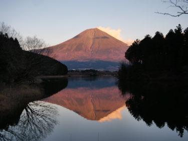 富士山三昧が味わえる大自然のプライベートサウナ